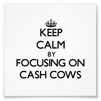 Keep Calm by focusing on Cash Cows Photo Print