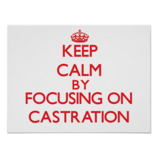 Keep Calm by focusing on Castration Posters