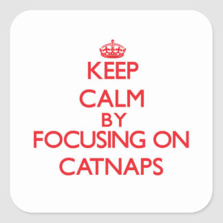 Keep Calm by focusing on Catnaps Square Sticker