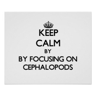 Keep calm by focusing on Cephalopods Poster