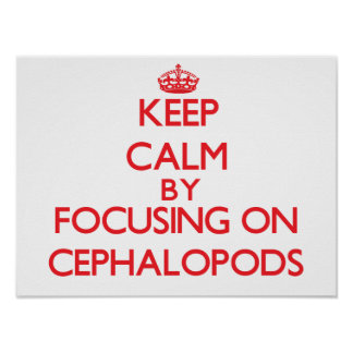 Keep calm by focusing on Cephalopods Posters
