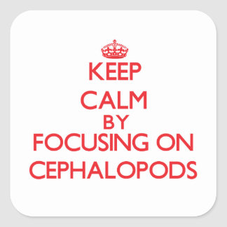 Keep calm by focusing on Cephalopods Square Sticker