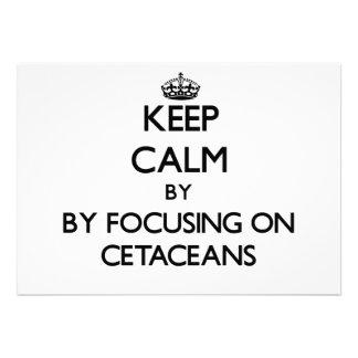Keep calm by focusing on Cetaceans Custom Invitation