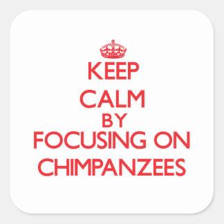 Keep Calm by focusing on Chimpanzees Sticker