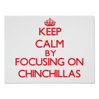 Keep calm by focusing on Chinchillas Posters