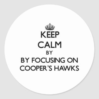 Keep calm by focusing on Cooper's Hawks Round Stickers