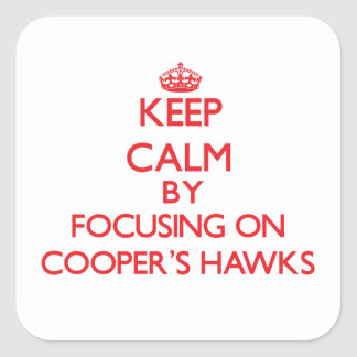 Keep calm by focusing on Cooper's Hawks Square Stickers