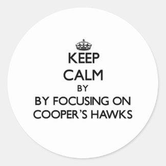 Keep calm by focusing on Cooper's Hawks Round Sticker