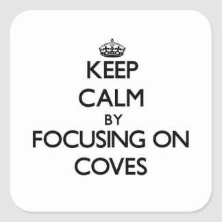 Keep Calm by focusing on Coves Stickers