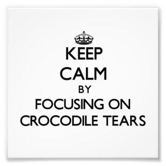 Keep Calm by focusing on Crocodile Tears Art Photo