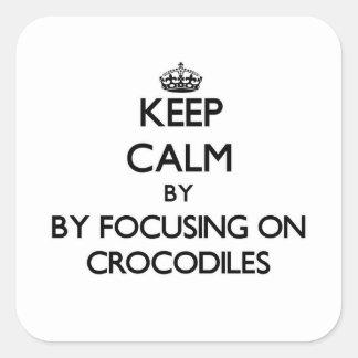 Keep calm by focusing on Crocodiles Stickers