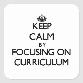 Keep Calm by focusing on Curriculum Square Sticker