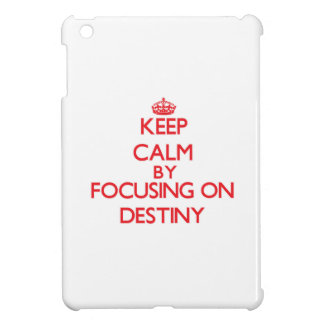 Keep Calm by focusing on Destiny Case For The iPad Mini