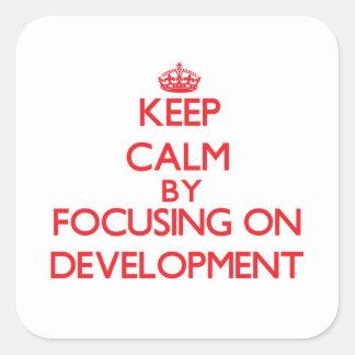 Keep Calm by focusing on Development Sticker