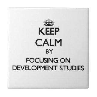 Keep calm by focusing on Development Studies Tile