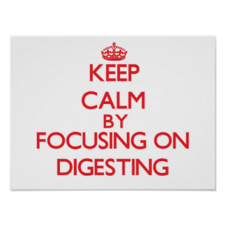 Keep Calm by focusing on Digesting Poster