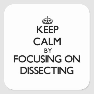 Keep Calm by focusing on Dissecting Square Sticker