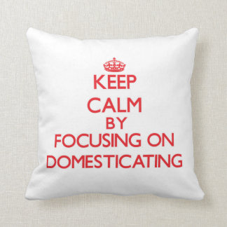 Keep Calm by focusing on Domesticating Pillows