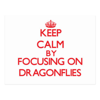 Keep Calm by focusing on Dragonflies Post Card