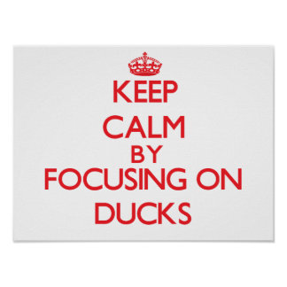 Keep calm by focusing on Ducks Posters