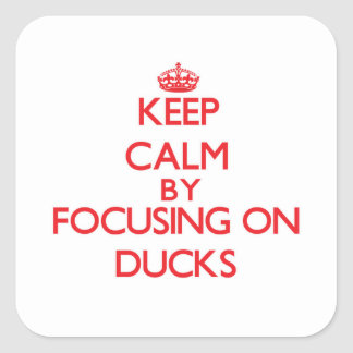 Keep Calm by focusing on Ducks Square Sticker