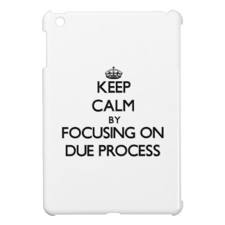 Keep Calm by focusing on Due Process iPad Mini Cases
