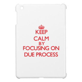 Keep Calm by focusing on Due Process Cover For The iPad Mini
