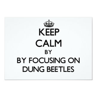 Keep calm by focusing on Dung Beetles 5x7 Paper Invitation Card