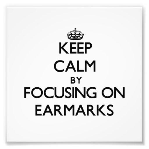 Keep Calm by focusing on EARMARKS Photo