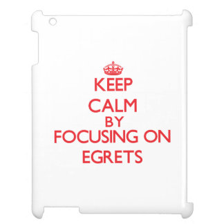 Keep calm by focusing on Egrets Case For The iPad 2 3 4
