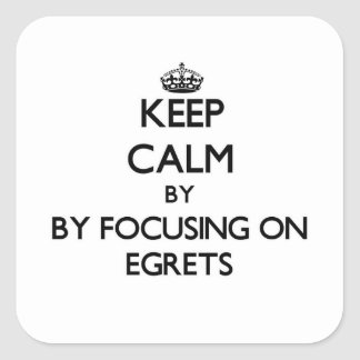Keep calm by focusing on Egrets Stickers