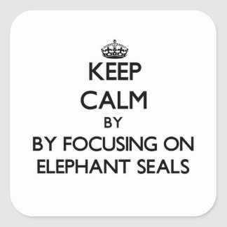Keep calm by focusing on Elephant Seals Square Sticker