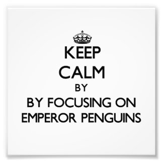 Keep calm by focusing on Emperor Penguins Art Photo