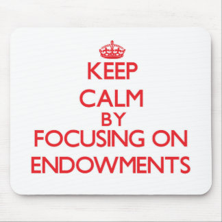 Keep Calm by focusing on ENDOWMENTS Mouse Pad