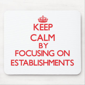 Keep Calm by focusing on ESTABLISHMENTS Mouse Pad