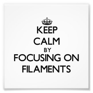 Keep Calm by focusing on Filaments Photographic Print