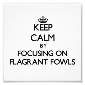 Keep Calm by focusing on Flagrant Fowls Photo Print