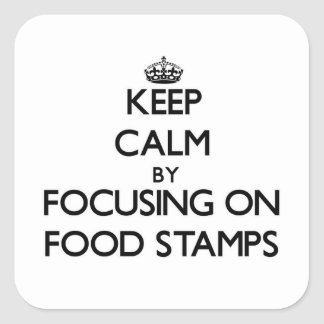 Keep Calm by focusing on Food Stamps Stickers