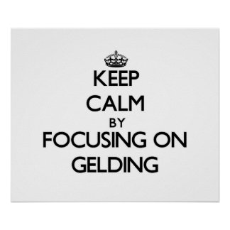 Keep Calm by focusing on Gelding Poster