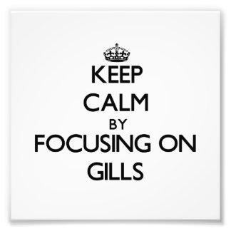 Keep Calm by focusing on Gills Art Photo