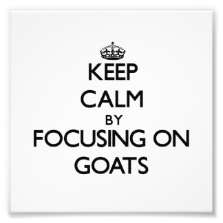 Keep Calm by focusing on Goats Photo Print
