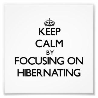 Keep Calm by focusing on Hibernating Photo