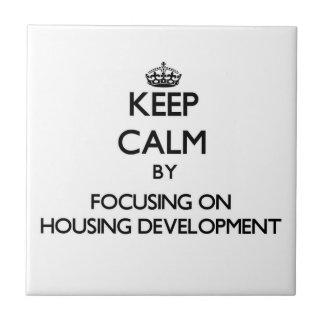 Keep Calm by focusing on Housing Development Ceramic Tile