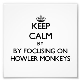 Keep calm by focusing on Howler Monkeys Photograph