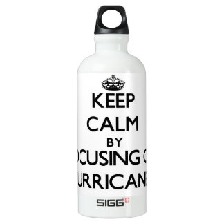 Keep Calm by focusing on Hurricanes SIGG Traveler 0.6L Water Bottle
