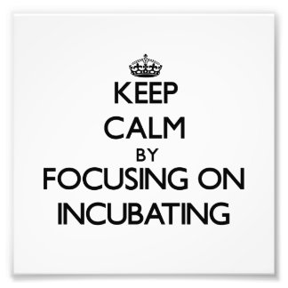 Keep Calm by focusing on Incubating Photo Print