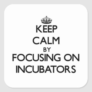 Keep Calm by focusing on Incubators Square Sticker