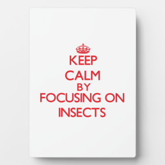 Keep calm by focusing on Insects Display Plaque