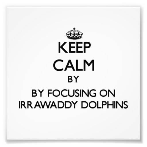 Keep calm by focusing on Irrawaddy Dolphins Art Photo