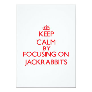 Keep calm by focusing on Jackrabbits 5x7 Paper Invitation Card